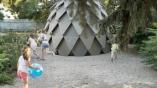 d7988-pinecone_cadbaf4e359e2a973d4396e58dae135c